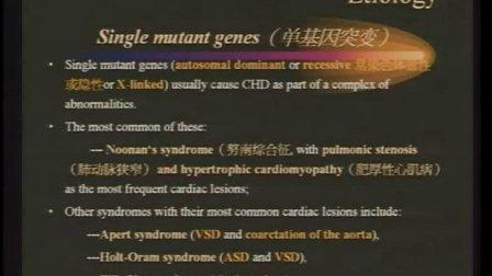 先天性心脏病总论