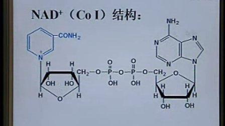 中国医科大学 生物化学与分子生物学11