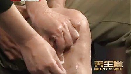 《养生堂》 20120829 国医大师的奇穴奇方(3)感鼻炎贺普仁 程海英