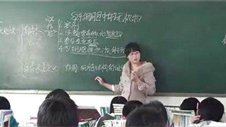 赵县中学高一生物邓清华细胞中的无机物