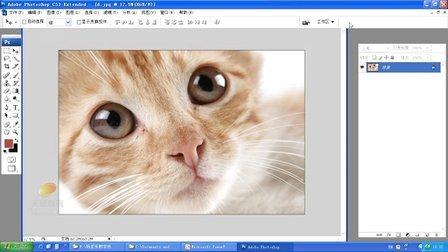 天琥平面设计教程【photoshop图片处理一】(主讲:杨亚东)