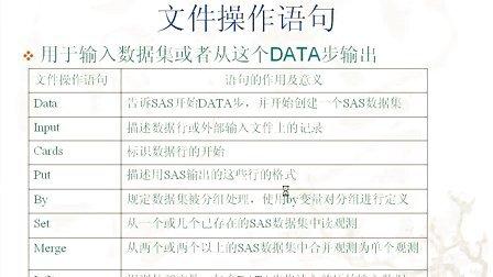 第2章  SAS编程入门(数据熊猫论坛 www.datapanda.net)