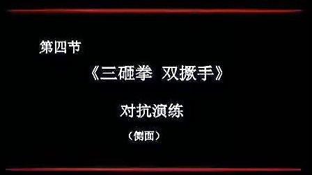 少林大洪拳实战全集.