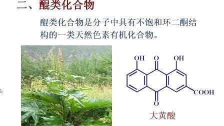 天热药物化学01 西安交大 需全套加QQ896730850
