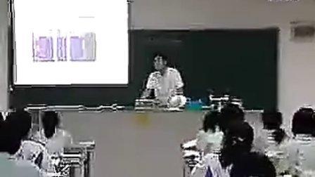 43高一化學优质课展示《钠的性质与应用》马老师