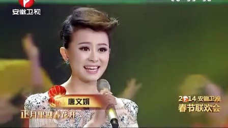 2014安徽卫视春晚[2014安徽卫视春晚]
