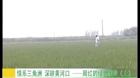 周红:情系黄河口 深耕三角洲