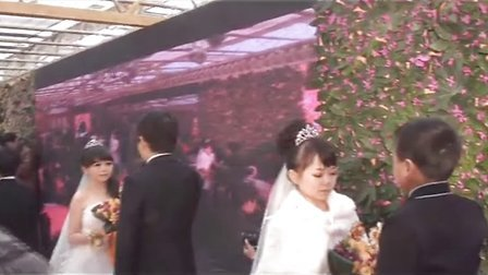 袖珍人婚礼-仪式-1