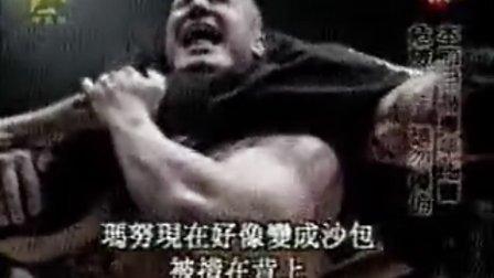 [公开]国外的格斗节目