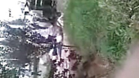 临漳8月17日车祸现场图片,当场超过4人