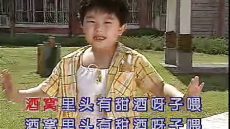 [热门播放]幼儿园歌曲演唱《小酒窝》儿童卡拉OK大赛
