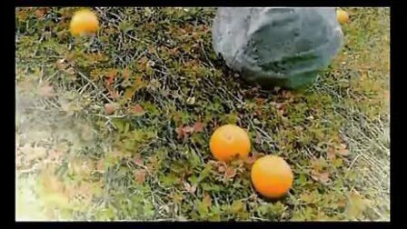统一鲜橙多最新广告