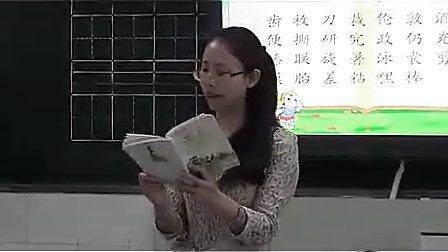 集中识字邮票齿孔的故事充气雨衣教学视频人教版,陈妙   小学二年级语文课堂实录教学视频