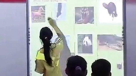 h64458小学五年级科学优质课展示上册《动物的食物》