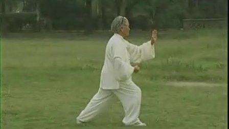 85式传统 杨式太极拳 第34-46式教学