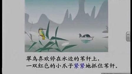 三年级语文北师大版梁娜《翠鸟》课堂实录与教师说课