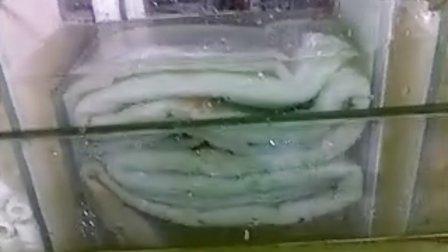 自制玻璃鱼缸过滤.背滤.外置过滤