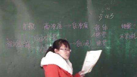 威县一中 生物 黄慧琳