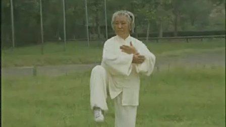 传统 杨式太极拳 第59-85式教学