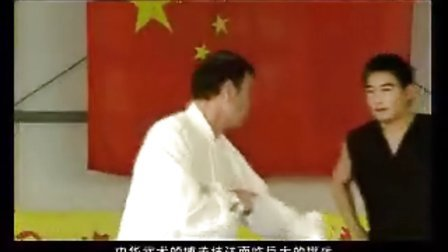 赵堡太极拳李随成太极推手道讲座_1_01