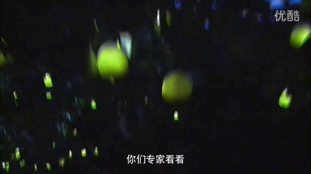 中国4A创意金银奖网络视频