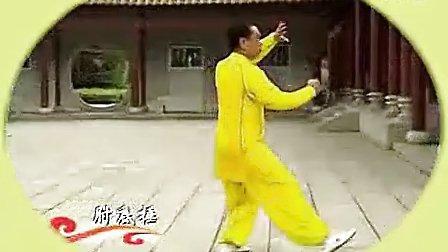 段位制杨式太极拳五段单练套路