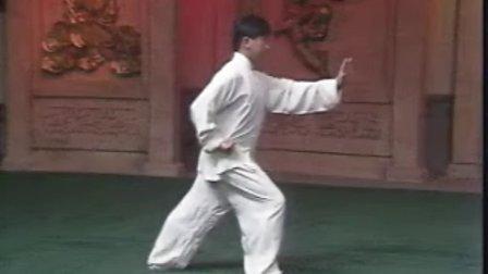 杨氏太极拳103式传统套路完整套路 口令版 表演者:杨军
