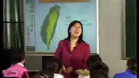 八年级地理下册祖国的神圣领土台湾省八年级地理优质示范课视频