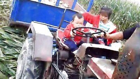 小孩开车 (1)搞笑,,726821162