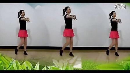 2013最新广场舞 小妹听我说背面 广场舞教学[高清版]_标清