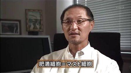[NHK][道兰]疾病的起源(6)过敏-两亿年后的免疫异常