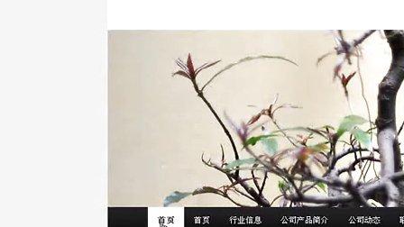 wordpress全套免费视频教程_免费下载第五讲:外观-主题