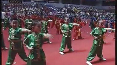 北京市首届幼儿武术操汇演