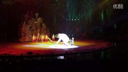 广州长隆国际大马戏-02
