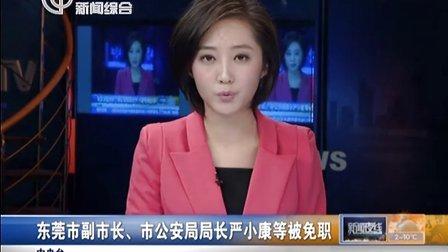东莞市副、市局局长严小康等被免职[新闻夜线]