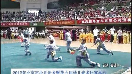 2012年 CETV1-第九届幼儿武术比赛回顾
