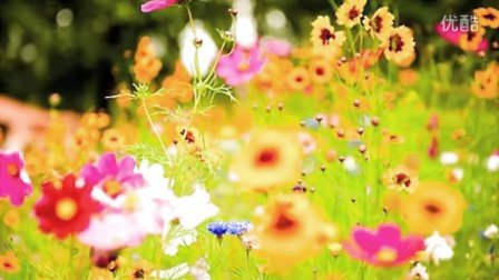 Dominick Argento - 6 Elizabethan Songs -1. Spring