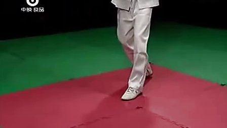 独家-李志河咏春拳教学(音画修复同步版)_标清