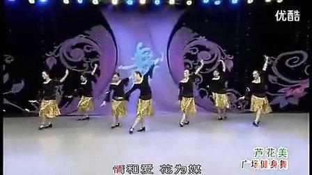 紫蝶周思萍广场舞芦花美背面分解动作教学 杨艺杨丽萍踏歌动动_标清