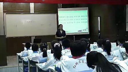 钓鱼的启示第一课时教学视频小学语文优秀课堂实录视频专辑