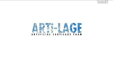 ARTI-LAGE宣传资料canton fair