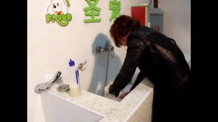 宠物店加盟_比熊犬洗澡教程视频完整版_http://www.petjm.com