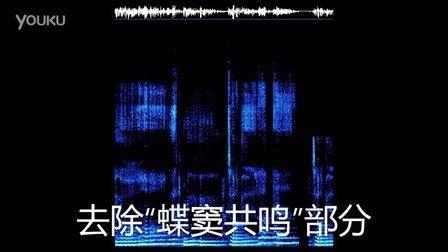 """解读""""蝶窦共鸣""""(玛利亚凯利)"""