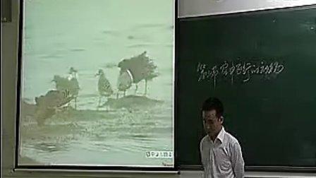八年级各种环境中动物空中飞行的动物初中生物优质课教学实录视频