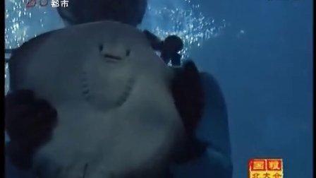 黑龙江电视台都市频道《新闻夜航》鳐鱼繁育