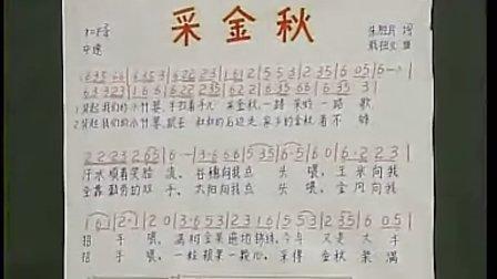 优酷网-七年級音樂優質課展示上册《采金秋》西南师大版黄小乐