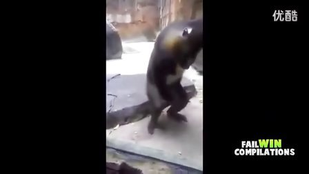【科幻视界】搞怪的猴子们,亮点在1分30秒,搞