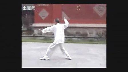 楊氏115式太极拳 陈龙骧一代著名大師李雅轩其高足其婿示範