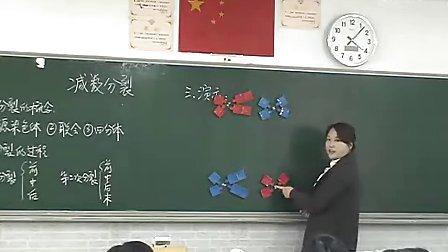 高一生物减数分裂教学视频圳大学附属中学于姗姗 1