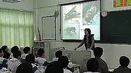八年级各种环境中动物初中生物优质课教学实录视频